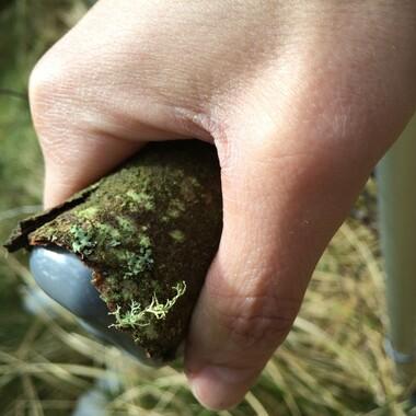Eine Hand umfasst einen moosbewachsenen Griff.